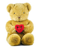 Bear with heart. On white background royalty free stock image