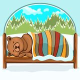 Bear in hibernation hand drawing, cartoon character, vector illustration, caricature. Colorful painted comical cute funny teddy. Bear lying on the bed covered stock illustration