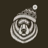 Bear hipster in knitted hat with jacquard pattern Royalty Free Stock Image