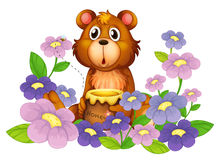 A bear holding a honey in the flower garden Royalty Free Stock Photos
