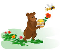 Bear with honey Royalty Free Stock Image