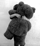 Bear hug Stock Images