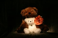 Bear Hug Rose2. Two Stuffed Bears hugging Stock Photo