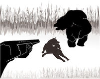 Bear hunting. Hunt shoot the bear, drives his dog Stock Photography
