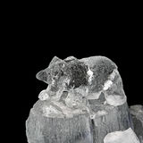 Bear in ice. Carved small bear frozen sculpture in ice Royalty Free Stock Photography