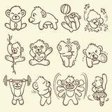 Bear icon Stock Images