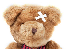 Bear ill Stock Images