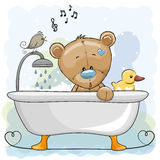 Bear In The Bathroom Stock Image