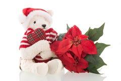 Bear isolated over white background Royalty Free Stock Photo