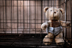 bear in jail vintage tone Royalty Free Stock Images