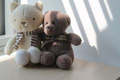 Bear and kitten toy sitting by the window in shadows Stock Photos