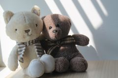 Bear and kitten toy sitting by the window in shadows Stock Photo