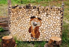 Bear, laid out the logs Stock Photos