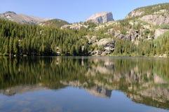bear lake Obrazy Royalty Free