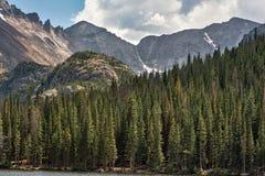 Bear Lake Colorado Pines Stock Photos