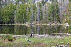 Bear Lake, Colorado Royalty Free Stock Photography