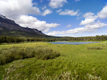 Bear Lake and wide meadow. Close to Maria Pass, Bear Lake with its  beautiful surrounding, meadow and Pine forests. At Glacier National Park Montana Royalty Free Stock Photography