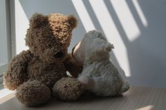 Bear and lamb toy sitting by the window in shadows. Bear and lamb sheep toy sitting by the window in shadows royalty free stock photos