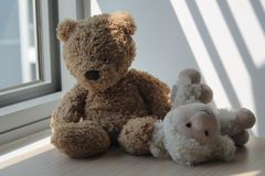 Bear and lamb toy sitting by the window in shadows. Bear and lamb sheep toy sitting by the window sill in shadows royalty free stock image