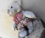 A bear left behind Stock Photo