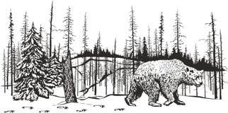 Bear left a den. Royalty Free Stock Image