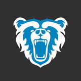 Bear Logo for sport club or team. Animal mascot head logotype. Template. Vector illustration. Flat style Royalty Free Stock Photography