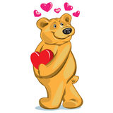 Bear in love. Bear with a gift on Valentine\\\'s Day Stock Images