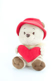 Bear in love wear red hat hold red heart on white background. Stock Images