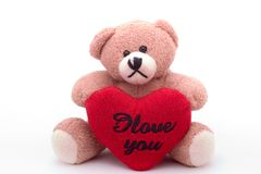 Bear loves you. Stuffed bear holding a heart, with text I love you, on white Royalty Free Stock Image