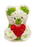 Bear made from flowers. Holding a red heart. Image isolated on white studio background Royalty Free Stock Photo