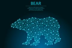 Bear made by points and lines, polygonal wireframe mesh, low poly animal illustration. royalty free stock images