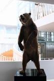 Bear market Royalty Free Stock Photography