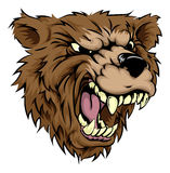 Bear mascot character Royalty Free Stock Photos