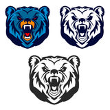 Bear mascot. Emblem of the sport team or club, Stock Photography