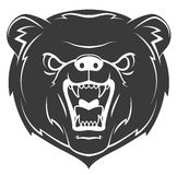 Bear Mascot Tattoo Royalty Free Stock Image