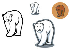 Bear mascots. Arctic and brown bear mascots isolated on white background Stock Photos