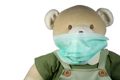 Bear with mask Stock Image
