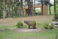 bear in the park Royalty Free Stock Photo