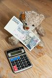 Bear with money Stock Image