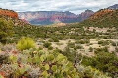 Bear Mountain-Spur Sedona Arizona lizenzfreies stockfoto
