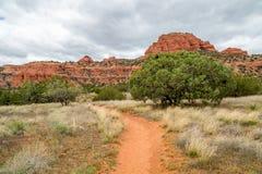Bear Mountain Trail Sedona Arizona royalty free stock image