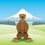 Bear and mountain. Stock Photography