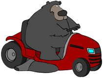 Bear On A Mower Stock Image