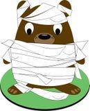 Bear Mummy Stock Photos