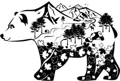 Bear and nature vector illustration