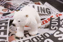 Bear on newspaper titles Royalty Free Stock Photo