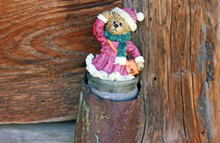 Bear in the old bank. Wood texture stock photos