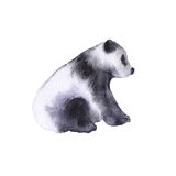 Bear the panda. Isolated on white background. Watercolor illustration Royalty Free Stock Photos