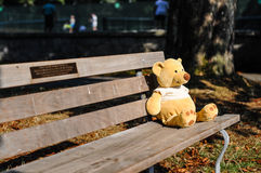 Bear in the park. Bear toy sitting on a bench in a park royalty free stock photos