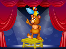 A bear and a parrot in the circus Royalty Free Stock Images